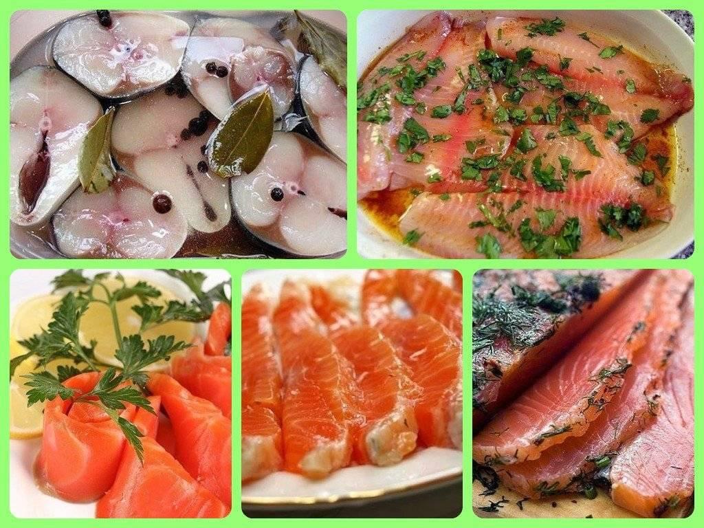 ✅ сагудай из горбуши: пошаговый рецепт с фото, как вкусно промариновать с лимоном в домашних условиях - tehnoyug.com