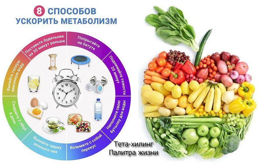 Что стимулирует обмен веществ? как улучшить метаболизм?