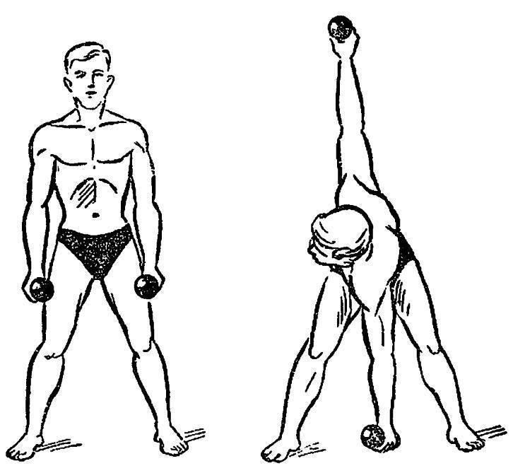 Упражнения с гантелями в домашних условиях: программа тренировок с гантелями на 4 недели