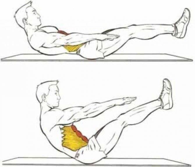 О «прямой» и «кривой» спине, тягах, приседах и о том, чего нужно опасаться на самом деле