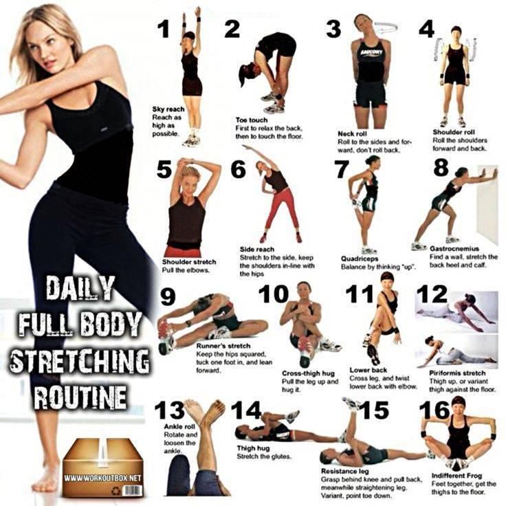 Тренировки для начинающих в домашних условиях для похудения: 50 упражнений + план на 5 дней