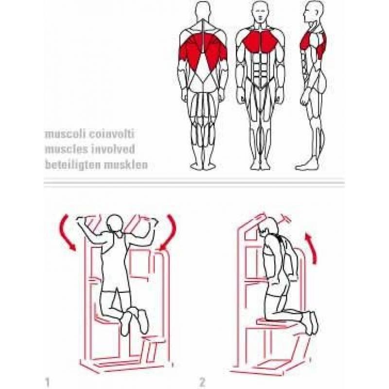 Подтягивания и отжимания. виды подтягиваний и отжиманй программы тренировок.