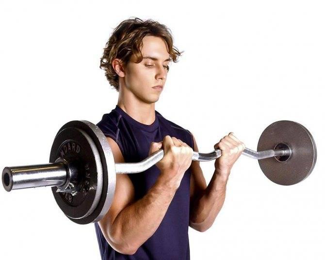 Упражнения с блином от штанги: тренировка в зале. упражнения с блином от штанги