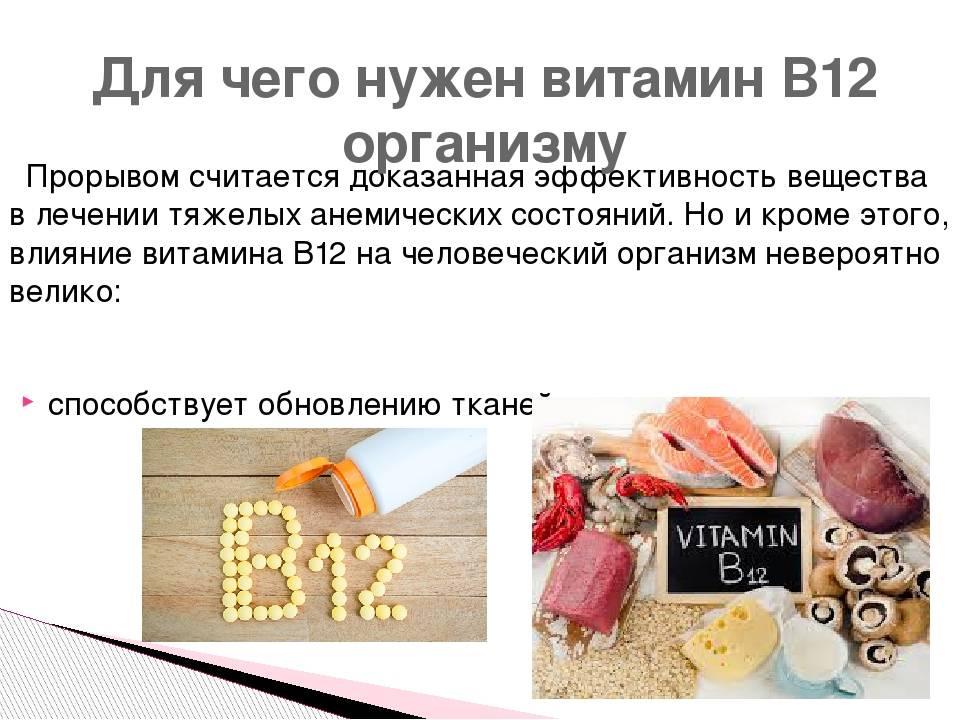 Изолейцин: значение и функции в организме, содержание в продуктах питания
