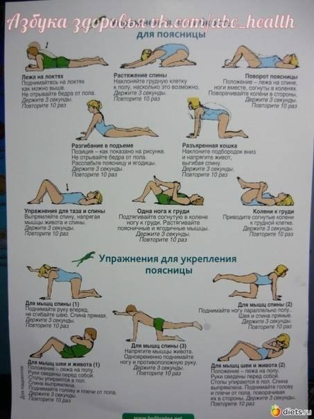 Лечебная физкультура при боли в спине | medi