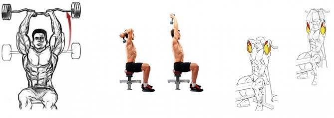 Жим штанги из-за головы стоя или сидя — идеальное упражнение для тяжелоатлетов