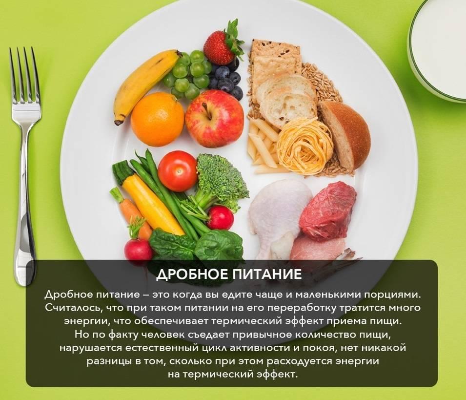Дробное питание для похудения, частое дробное питание - блог о спорте osporte