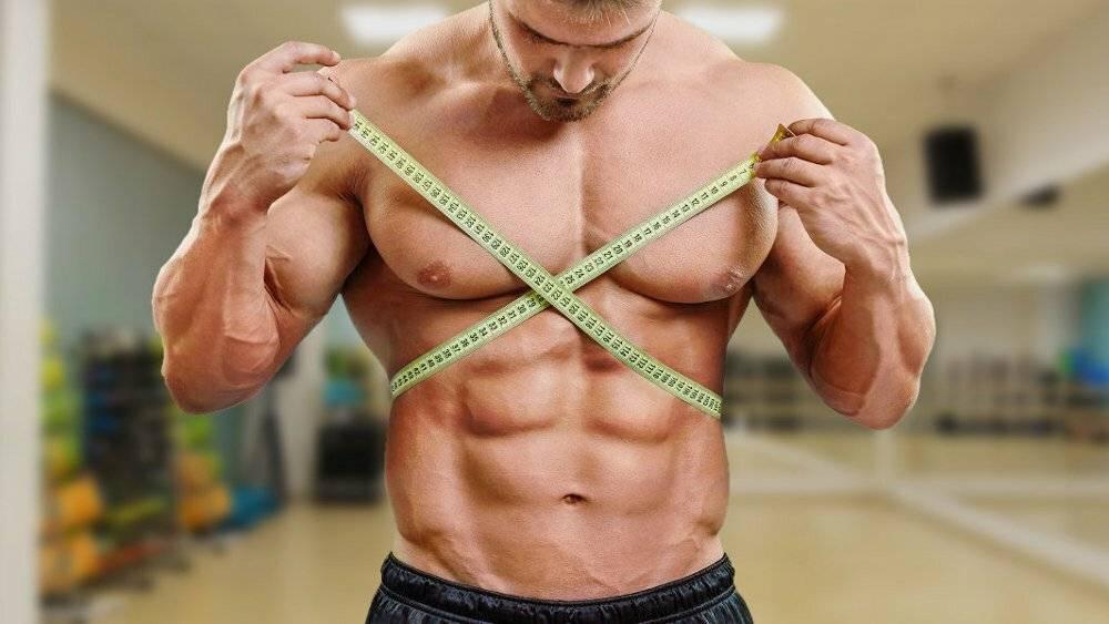 Упражнения для роста мышц, программа тренировок на объем мышц
