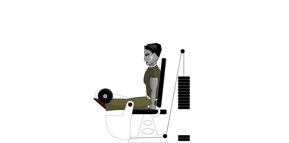 Ходьба на беговой дорожке для похудения и тренировки мышц