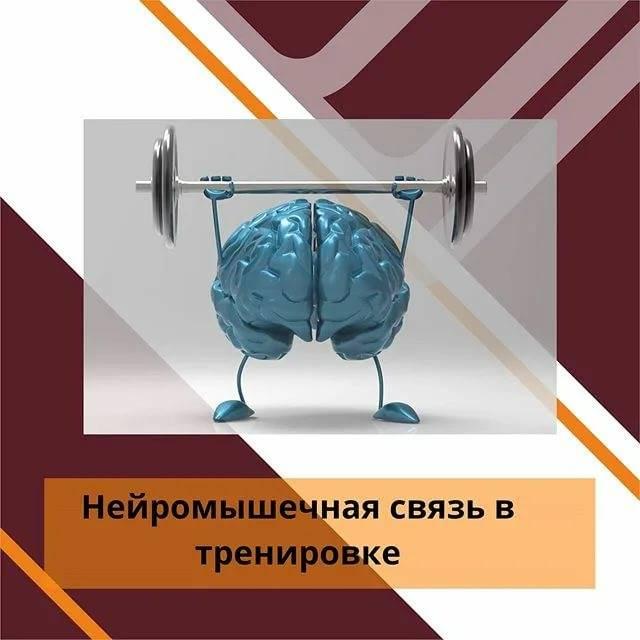 Текст книги «физиология человека. общая. спортивная. возрастная»