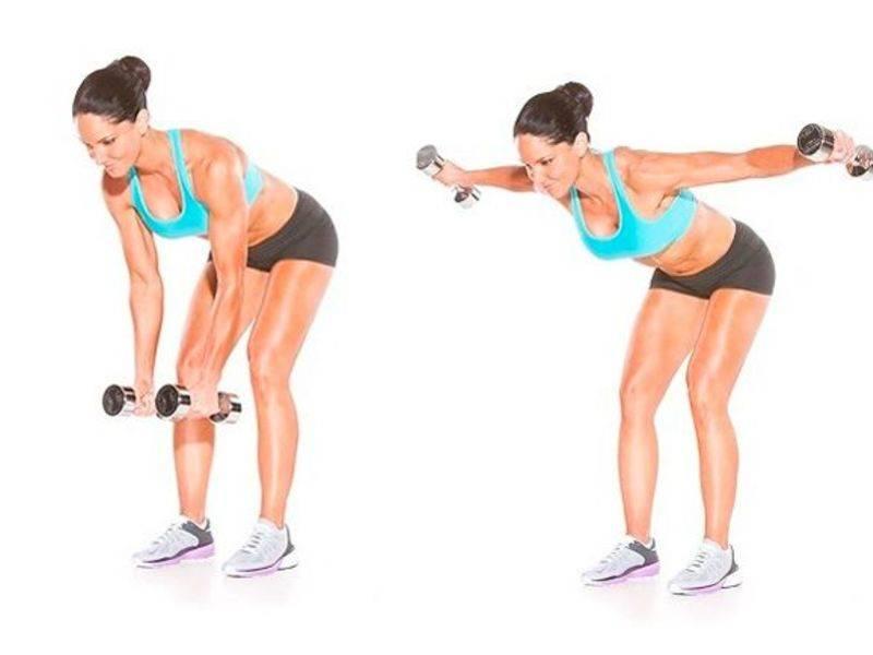 Комплекс базовых упражнений с гантелями для дома