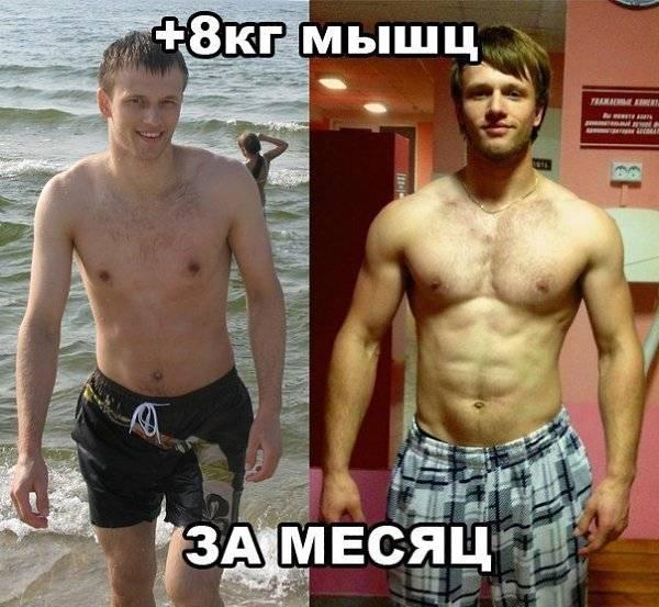 За сколько можно накачать грудные мышцы: эффективные упражнения, техника выполнения, фото - tony.ru