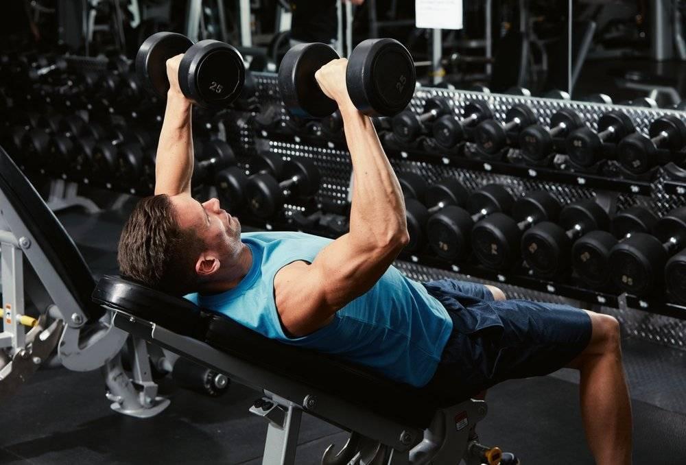 Топ 10 советов: как увеличить мышечную массу и силу