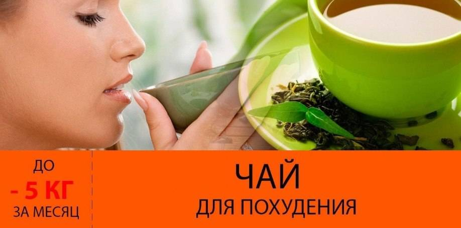 Способствует ли зеленый чай похудению