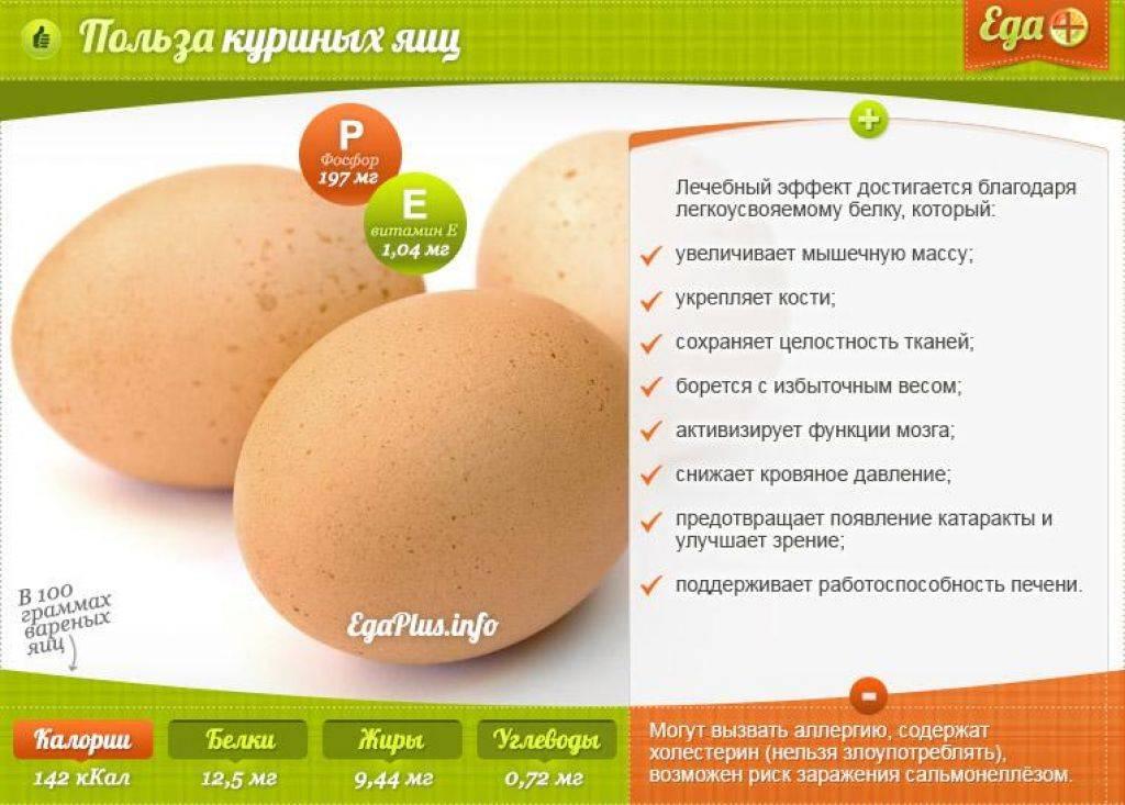 Куриные яйца: польза и вред для организма человека, противопоказания
