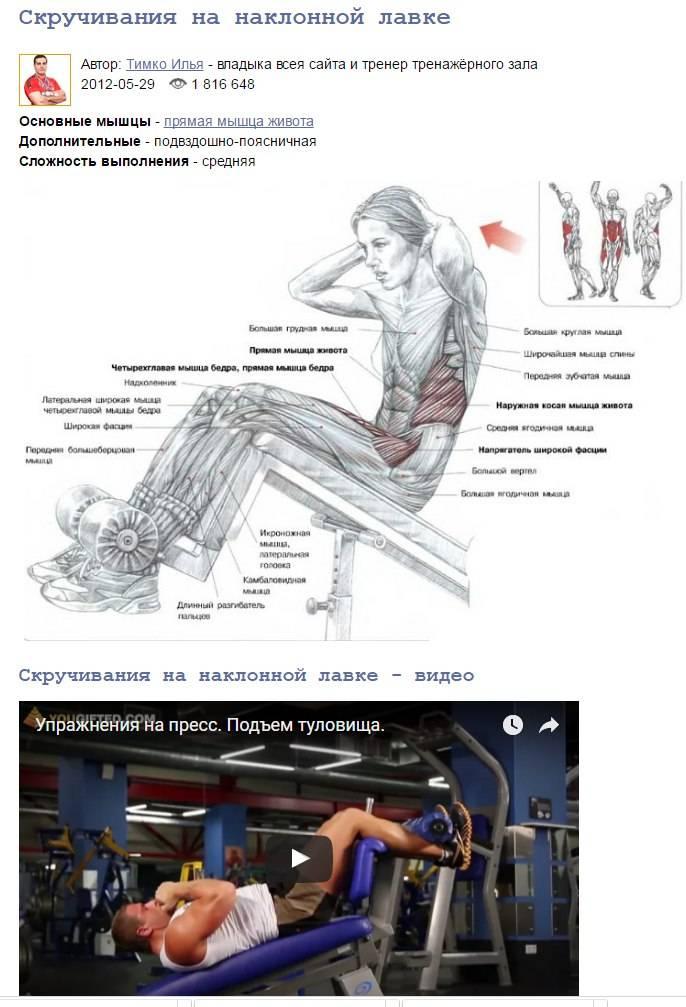 Скручивания на пресс - техника выполнения упражнения в различных вариациях