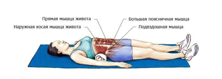 Упражнения на растяжку мышц брюшного пресса, нижней части поясницы и тазового пояса на большом валике или полу мяче