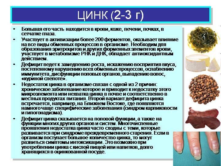 Цинк: симптомы дефицита и переизбытка в организме, полезные свойства, применение в косметологии, биодобавки