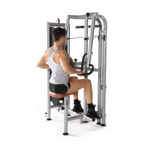 6 вариантов тяговых движений на широчайшие мышцы, чтобы построить большую спину. • bodybuilding & fitness