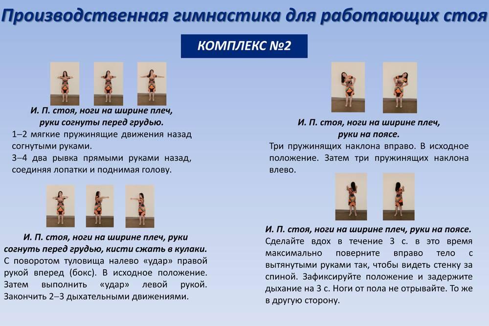 Производственная гимнастика: виды, формы и комплекс упражнений для офисных работников