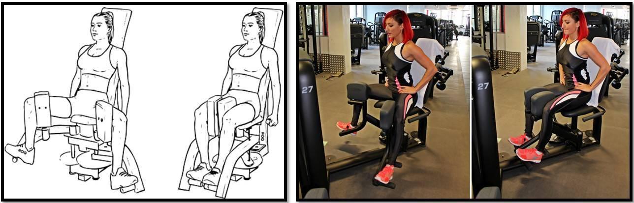 Разведение ног в тренажере: особенности упражнения, какие мышцы работают - tony.ru