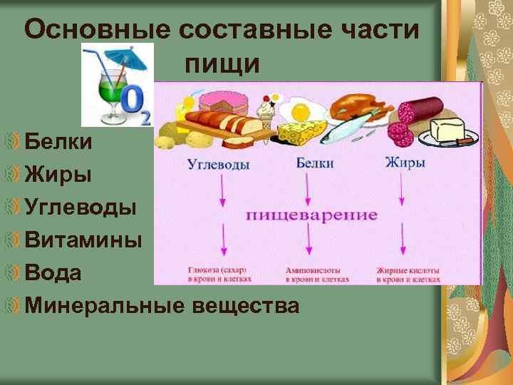 Урок 2. правильное питание