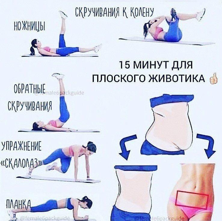 Упражнения для тонкой талии в спортзале и в домашних условиях