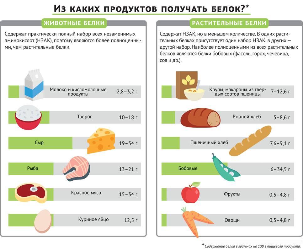 Белок в продуктах питания: таблица содержания белка в продуктах животного и растительного происхождения - tony.ru