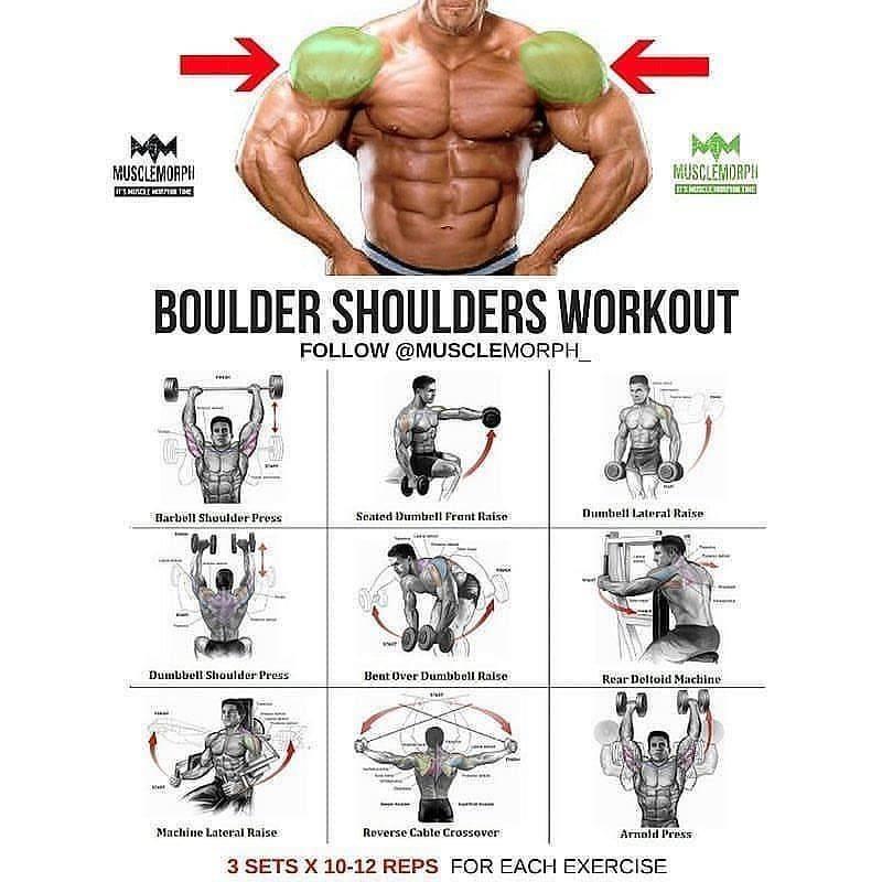 Упражнения на плечи в тренажерном зале для мужчин: лучшие варианты