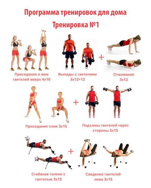 Круговая тренировка для новичков: занятия дома или в тренажерном зале, упражнения для начинающих