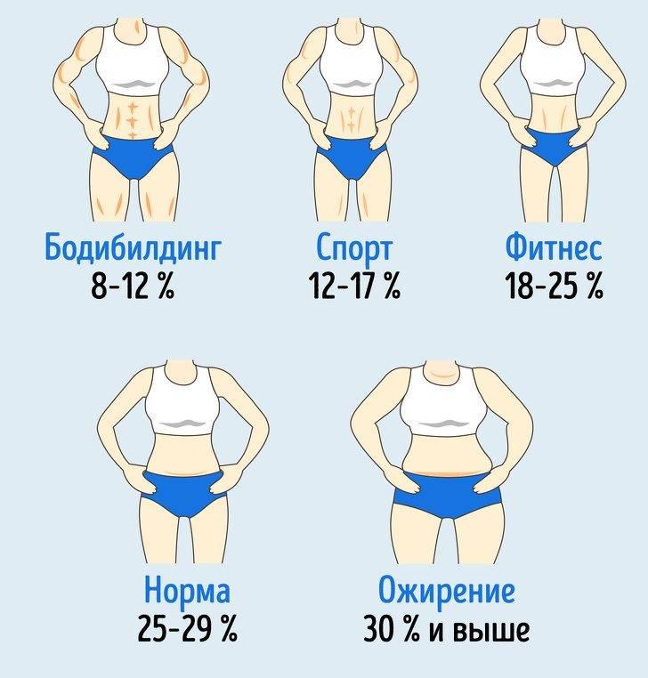 Сколько жира должно быть в теле чтобы был виден пресс 6 кубиков