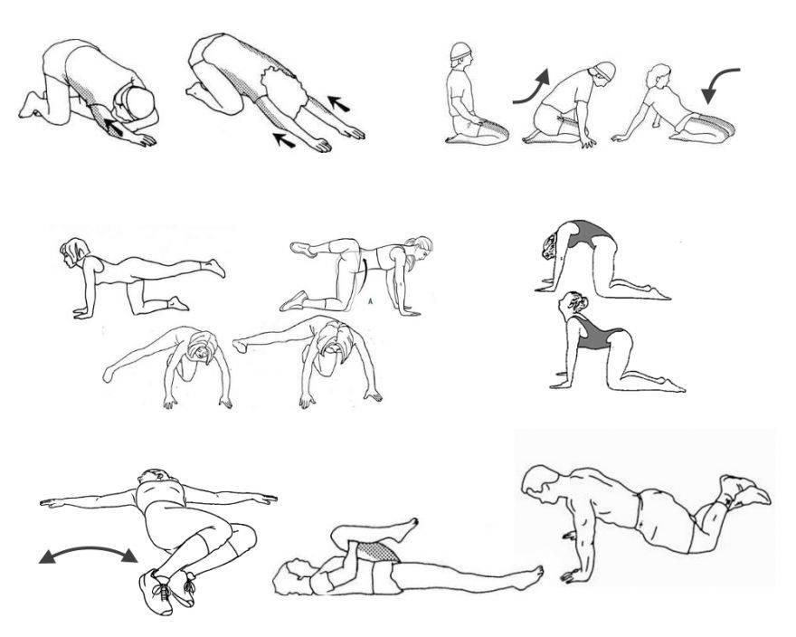 Растяжка спины: как растянуть широчайшие, трапециевидную и ромбовидные мышцы