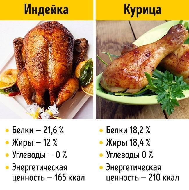 Калорийность крыло куриное. химический состав и пищевая ценность