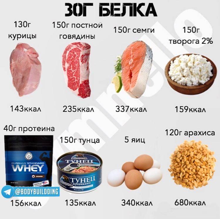 Высокобелковые продукты - 115 фото и список продуктов с высоким содержанием белков!