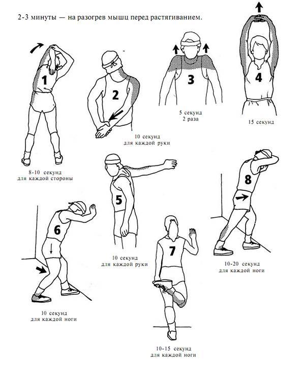 Разминка перед тренировкой   упражнения для растяжки и разминки