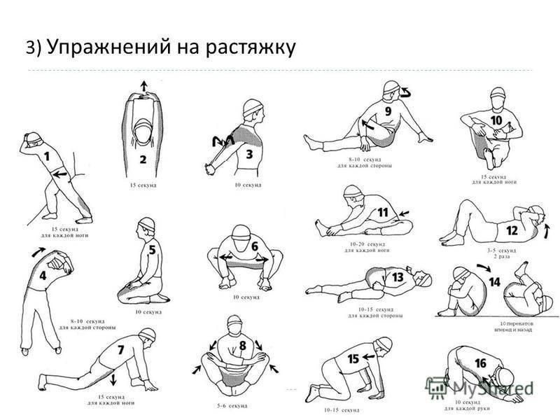 Комплекс упражнений для развития гибкости тела. советы тренеров