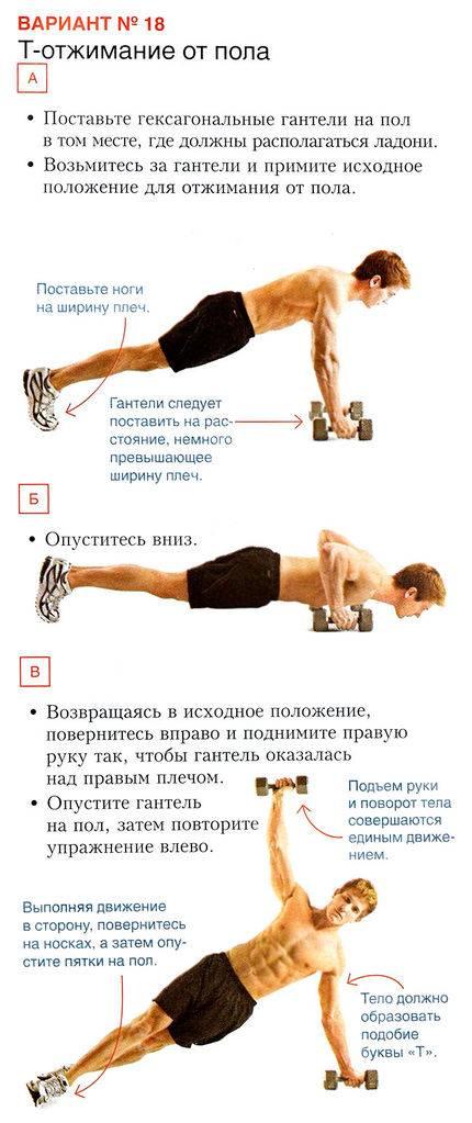 Отжимания от стены: как правильно выполнять упражнение