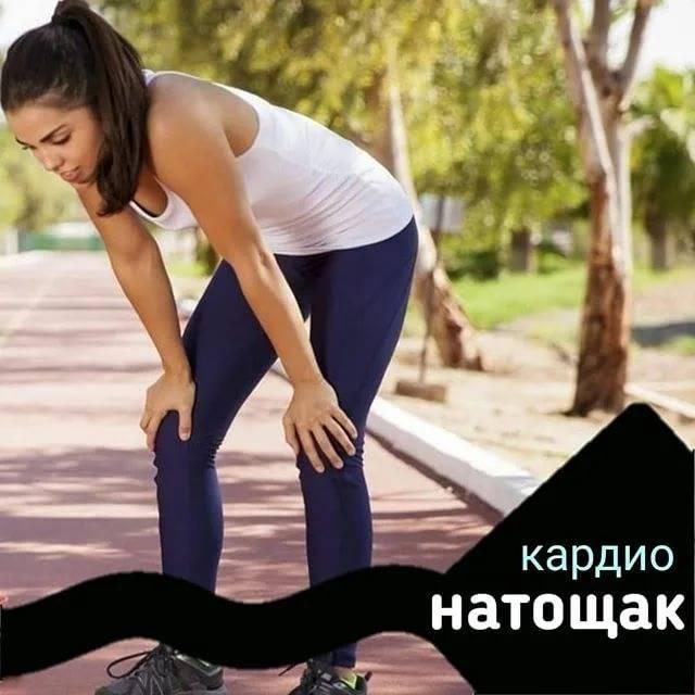 Полезно ли делать кардио натощак? – sportfito — сайт о спорте и здоровом образе жизни