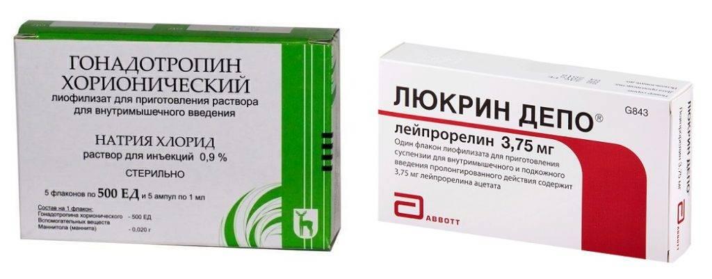 Статьи - хорионический гонадотропин: особенности применения.