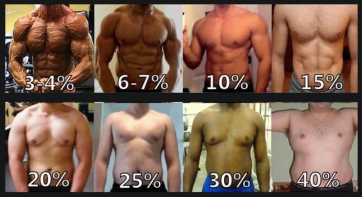 Сушка тела. как правильно сушиться | musclefit