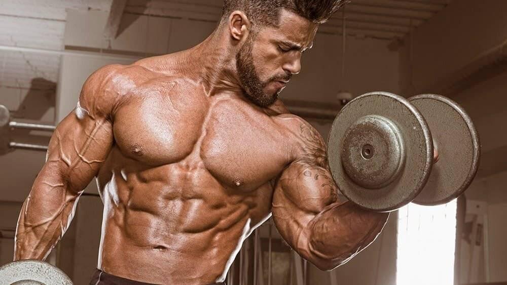 Гипертрофия мышц: обзор принципов тренировки для увеличения массы мышц. часть 2