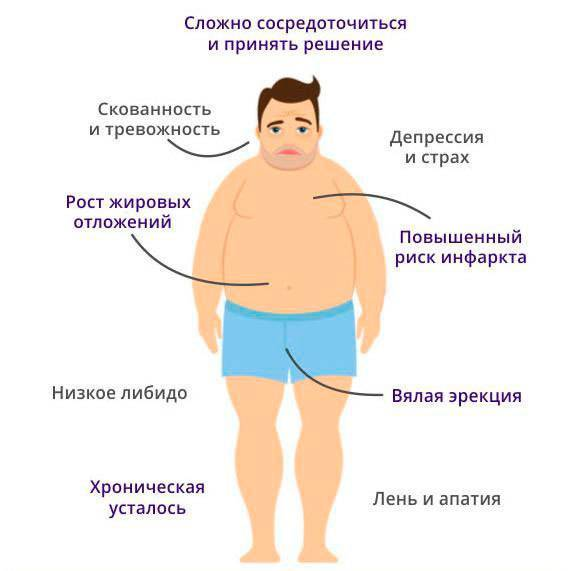 Как повысить тестостерон. 9 рекомендаций, чтобы поднять уровень мужского гормона