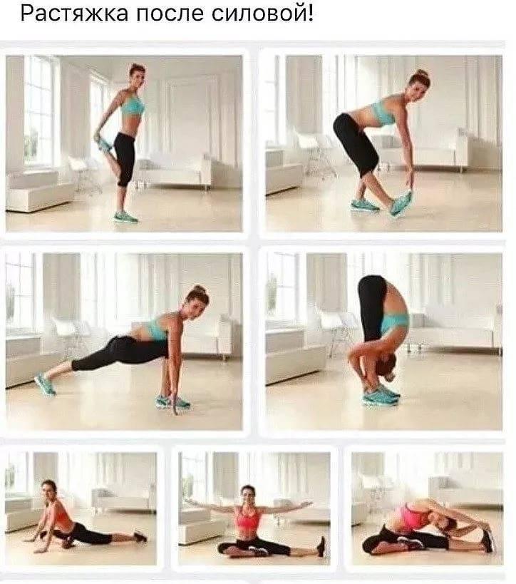 Растяжка для начинающих в домашних условиях: как правильно выполнять, варианты упражнений для всего тела