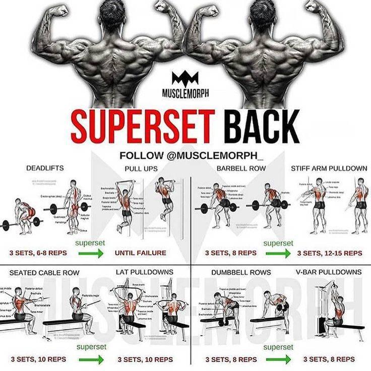 Тренировка груди и трицепса в один день | musclefit