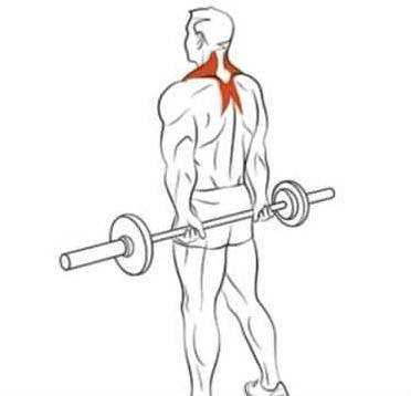 Тяга ли хейни:техника и варианты выолнения данного упражнения