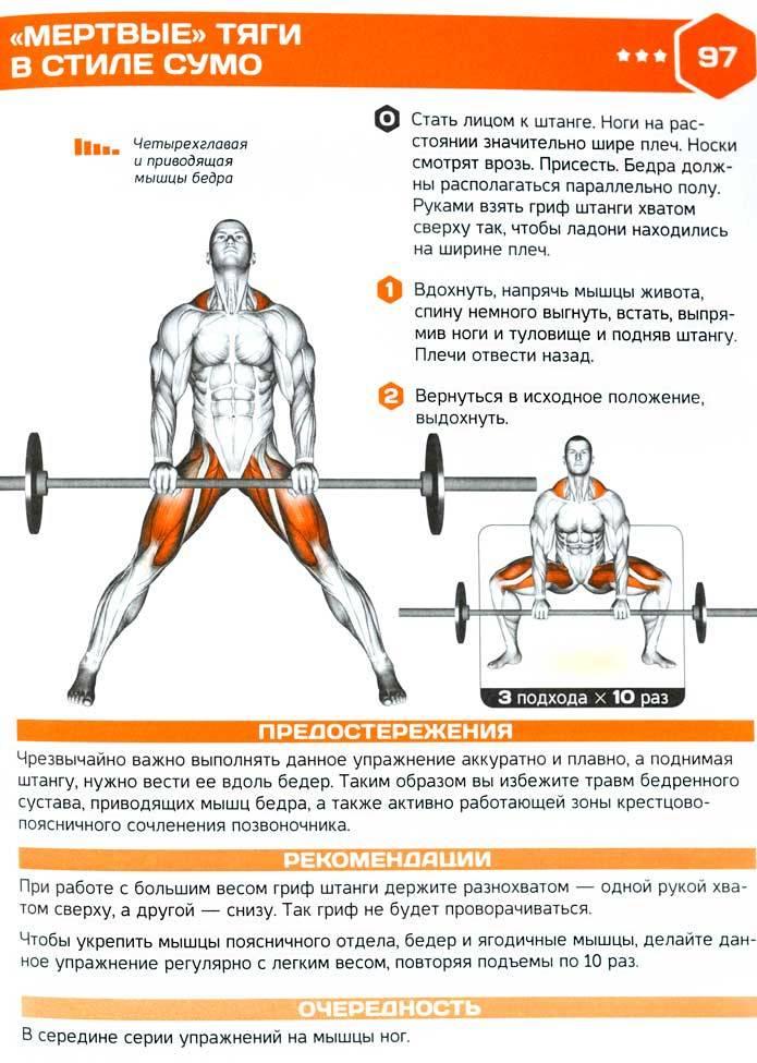 Становая тяга или тяга сумо, что лучше? • bodybuilding & fitness