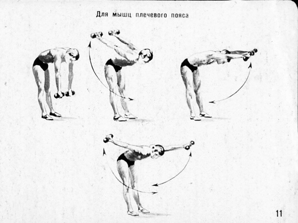 Самые эффективные упражнения с гантелями для мужчин