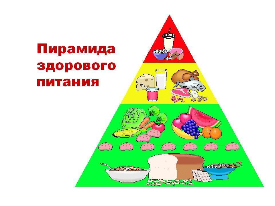Кормим детей правильно: сбалансированное питание от а до я