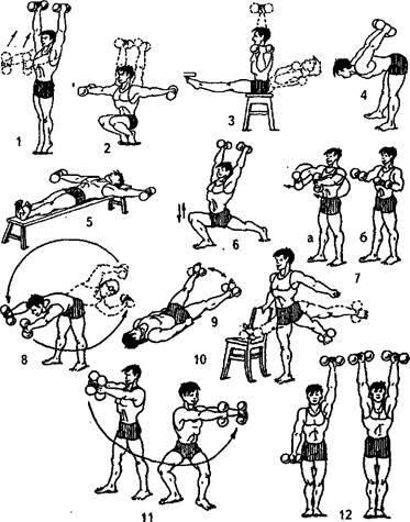 Упражнения с гантелями, комплексные тренировки, плюсы и минусы