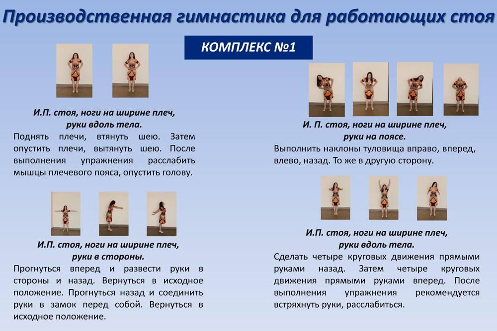 Офисная гимнастика – основные упражнения и методики, особенности комплексов